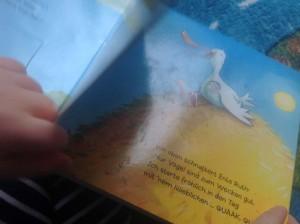 Quak, Kinderbuch Buch Bilderbuch