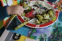Brokkoli, Reis und die Forelle schon weg