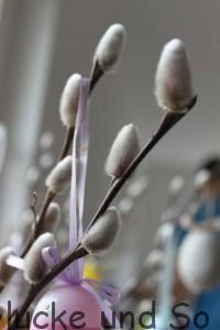 bald ist Ostern und die Weidenkätzchen blühen immer mehr