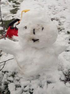 Schnee_Eis_ Reisepannen