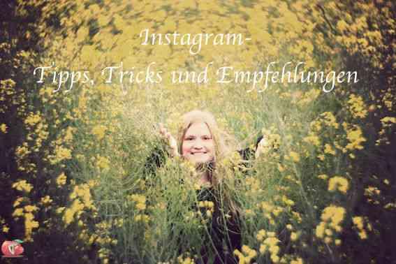 Iris_Blumen_Instagram