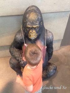 wib_gorilladame_spende