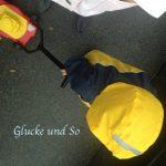 wib_sonnenstrahlen_regenspaziergang