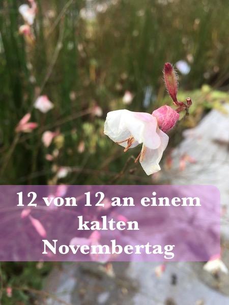 12v12-kalter-november