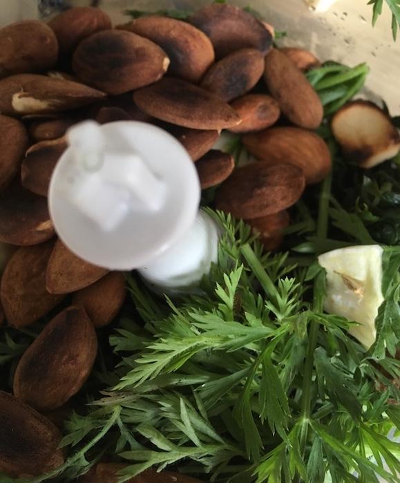 Pesto-Moehrenkraut-mixen