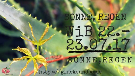 Sonne-Regen-WiB-22.-23.07.17