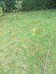 Geburtstagsparty-Rasen-gießen
