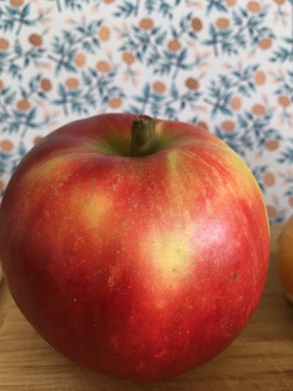 Apfel-Gesundheit-Logo