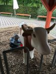 Playmobil-FunPark-Kuehe-melken