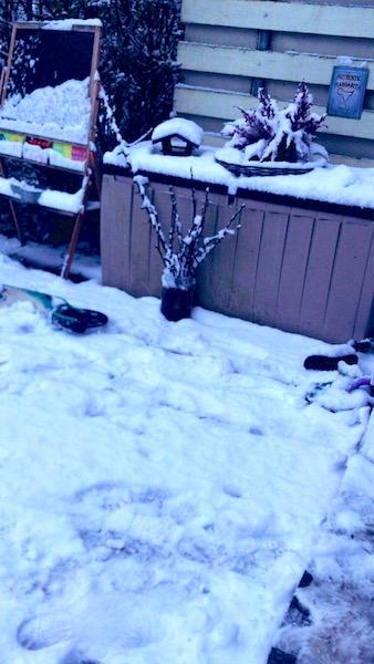 Corona Dezember 2020 Schnee